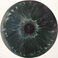 Web Cosmic'Eye NGC 0214, 20x20 cm, Oil o