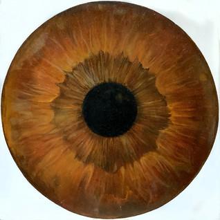web Cosmic'Eye.jpg