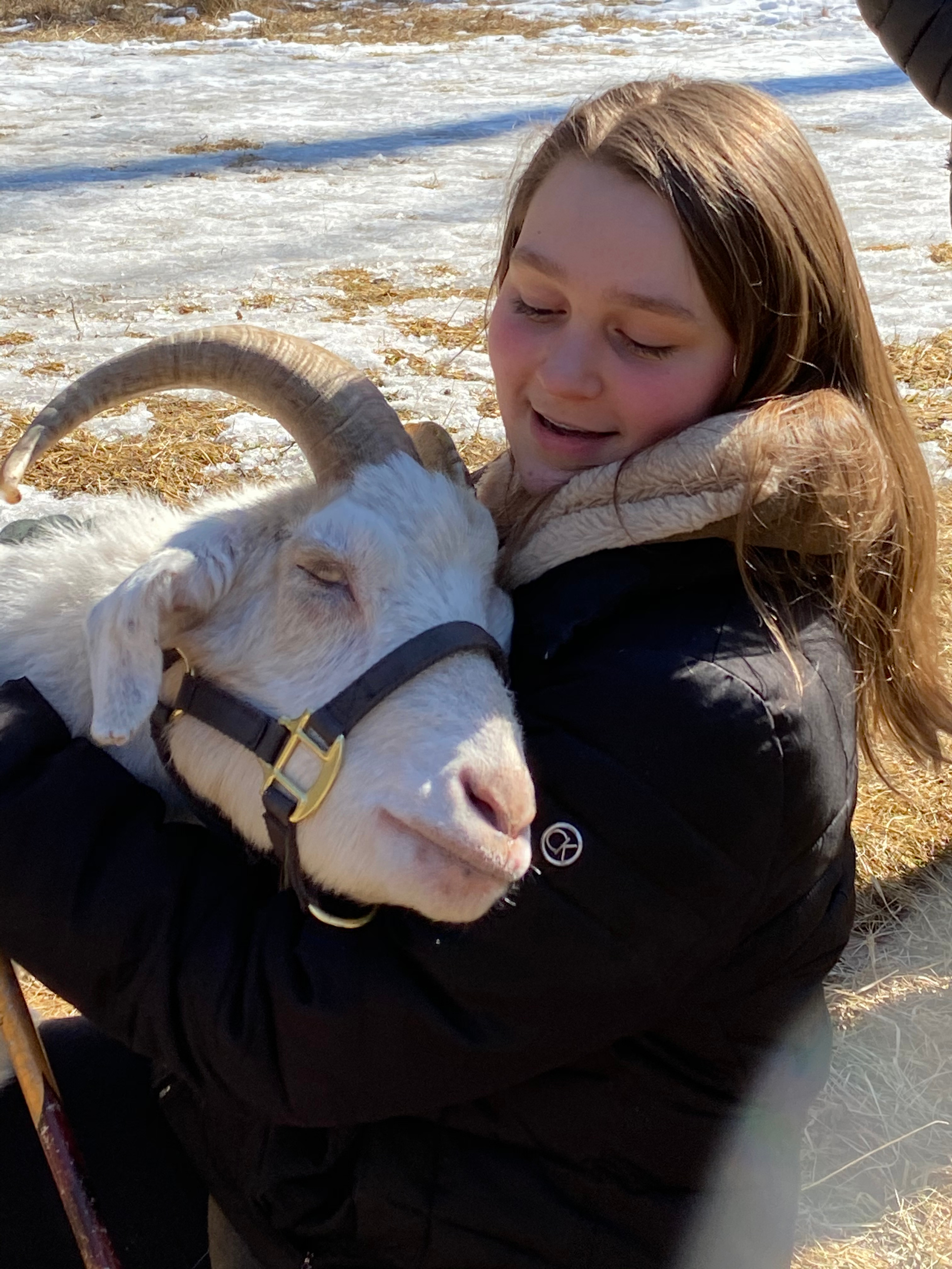 Hugs, Hike and Hang with Rescue Goats