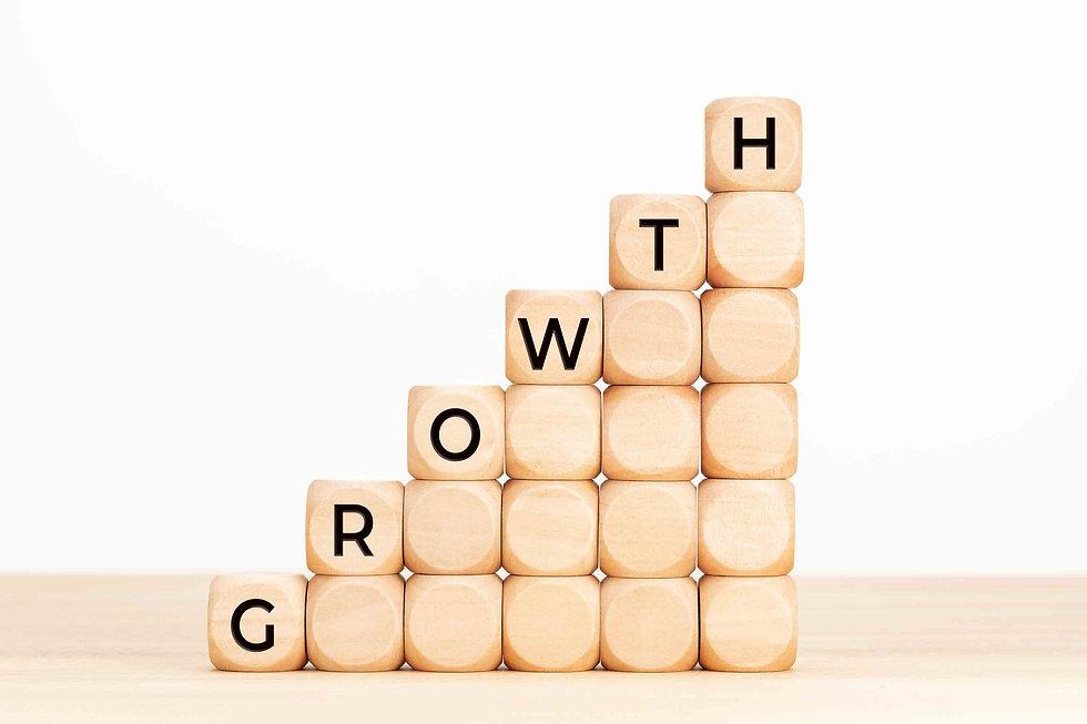 Growth shown in Bricks