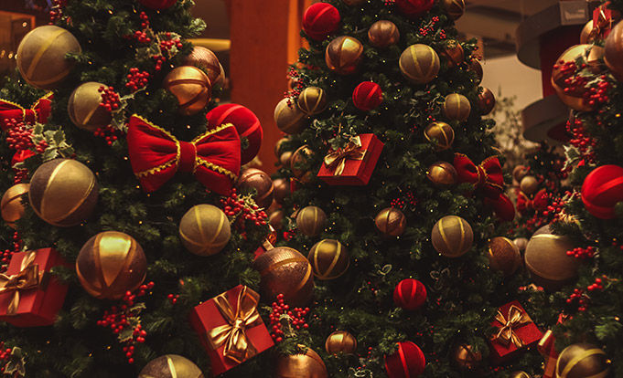 Christmas Trees in red and gold
