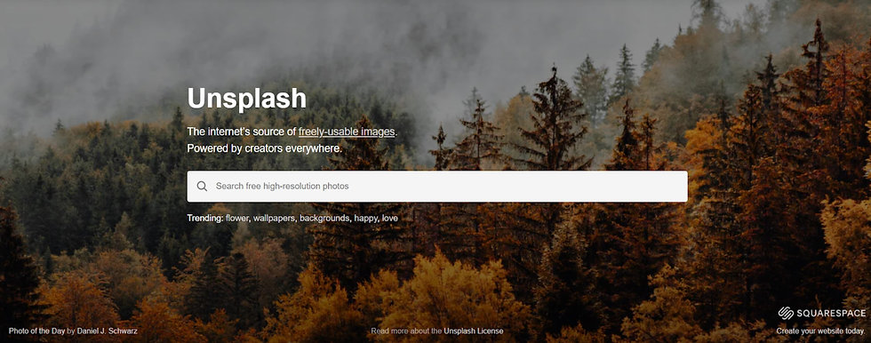 Unsplash screen shot