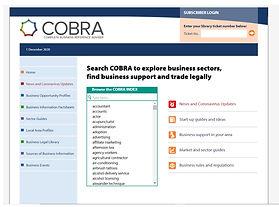Screenshot of a Cobra dashboard