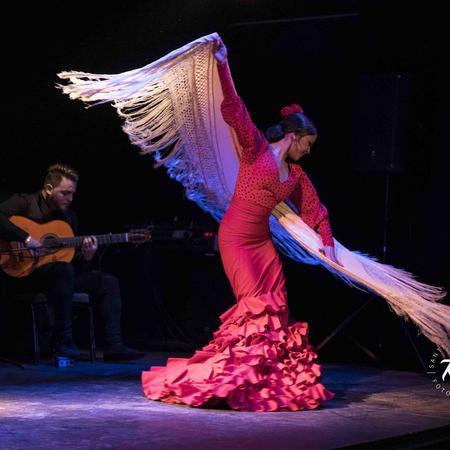 Flamenco Barcelona City VIP ZONE