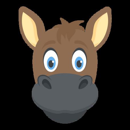 Animals - A Donkey