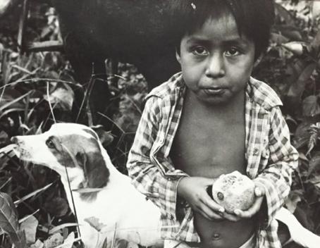 Primer Diagnóstico de Salud de la Niñez Indígena de México.