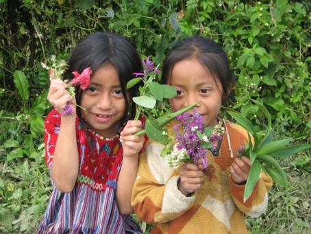 2010. Toneladas distribuidas en comunidades zapatistas.