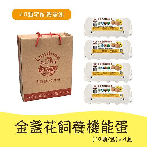 Trứng gà lutein (10 quả x 4 hộp)- Bộ hộp quà giao hàng tận nhà
