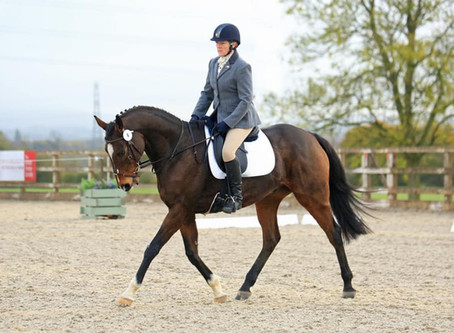 Area Dressage - Sunday 3rd November