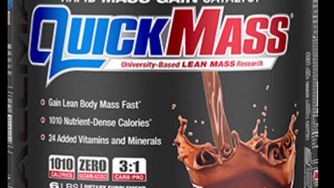 Quickmass Weight Gainer Protein 6lb
