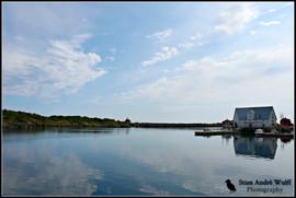 harbour, restaurant.jpg