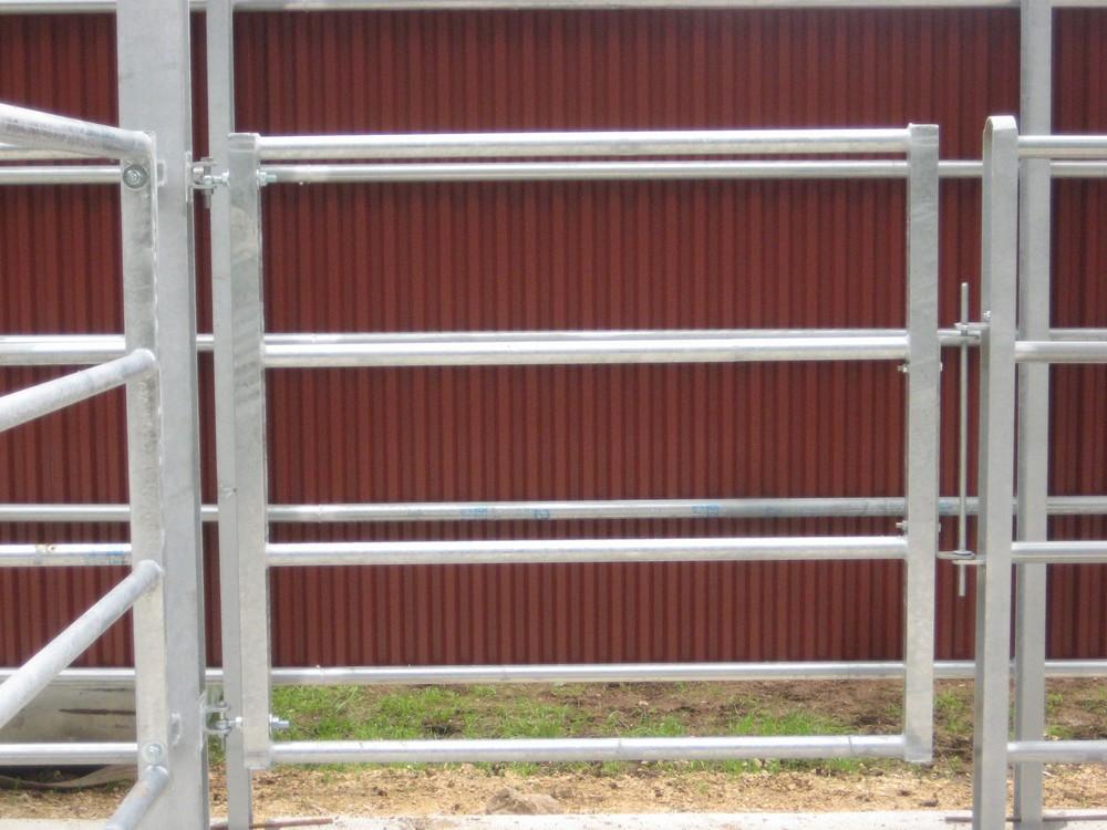 cancello uscita bestiame.JPG