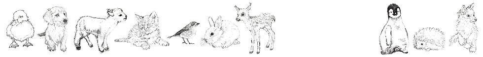 animal_banner.jpg