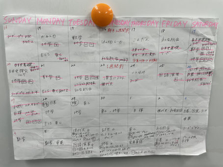 私のスケジュール表公開します。