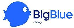 Big Blue logo.JPG