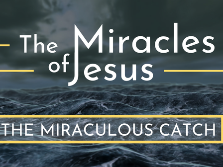 The Miraculous Catch