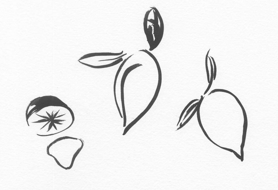 Lemon Sketches II