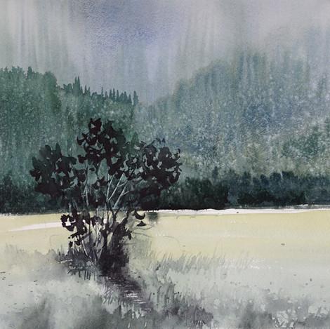 Whispering Brook @ Sandstone Ranch, 9X12
