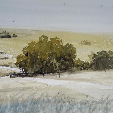 Sun Parched Hills @ Praire Canyon, 8x10