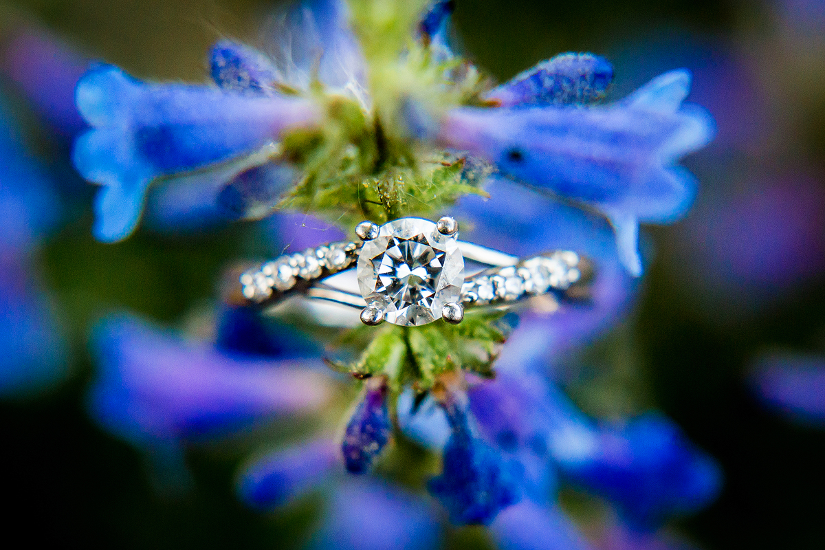 Blue Purple Engagement Ring Photos