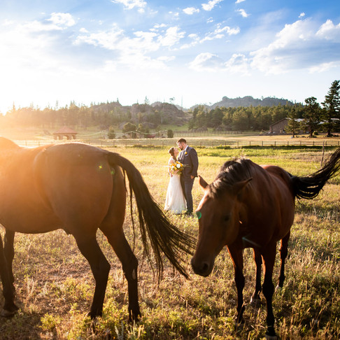Rachel and David's Summer Wedding at Stove Prairie Ranch - Fort Collins Colorado Wedding Photography