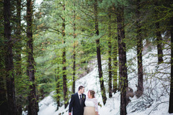 Washington Rainier Wedding Photos