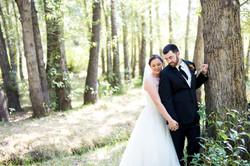 Mountain wedding - Estes Park