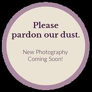 BHHS_PardonDust_Photos.png