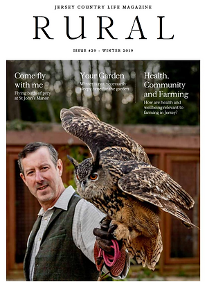 rural jersey cover, falcons, by Gary Grimsahaw, photoreportage, jersey