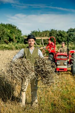 Harvest time Trinity Jersey