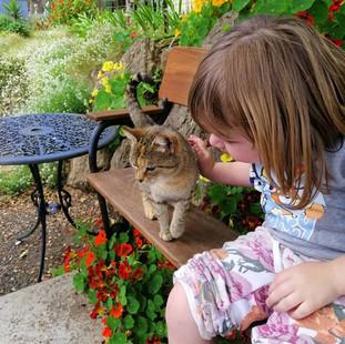 Little girl patting cat at Echo Farm Mou