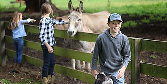 Boy with dog in front of girls donkey an