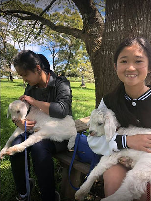 Girls with baby goats (2).JPG