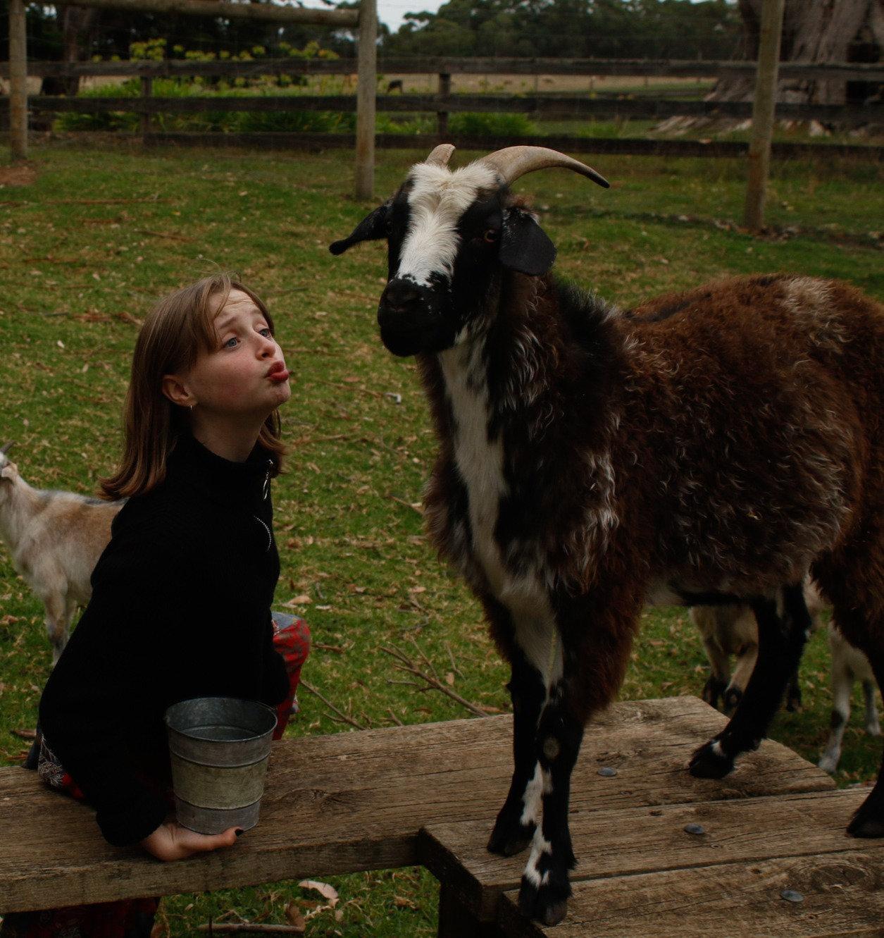 Behind the Scenes Farm Tour - CHILD
