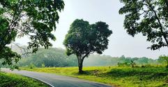 Screenshot_2020-09-13_Sandheep_Gopinath_