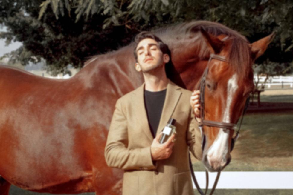 אור2 דיור סוס שמש.jpg