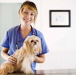 le système de biorésonance soigne tous les animaux