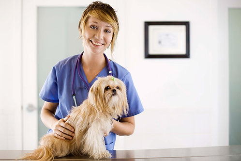 Provide Fecal Testing & Deworming for One Animal