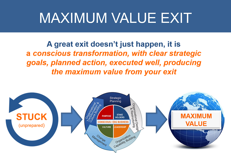 mexit maximum value exit.png