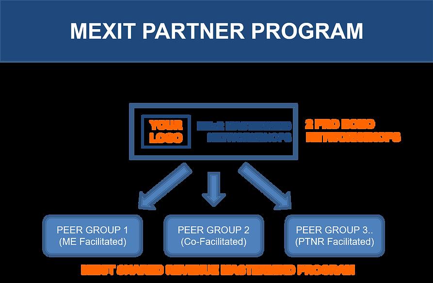 MEXIT PARTNER PROGRAM graphic.png