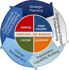 Conscious ESG business philosophy combined with a proven agile organizational change process
