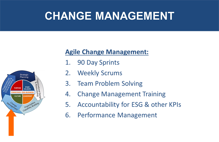 CHANGE MGT.png