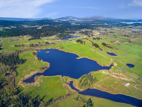 Zylstra Lake: Trail Times, Fall 2020
