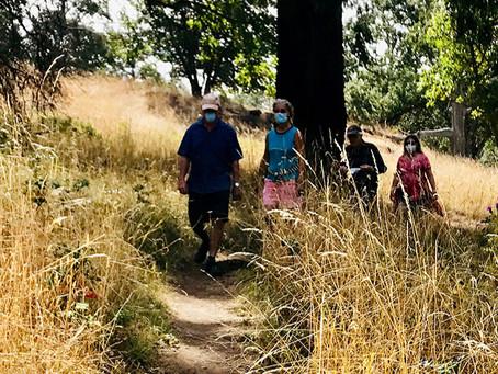 Trail Times - Summer, 2020