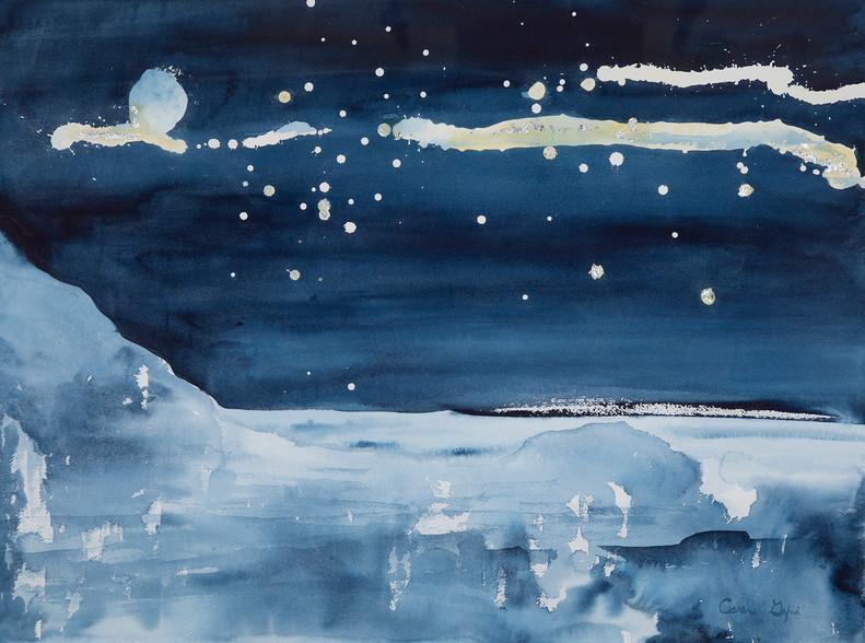 Arctic Circle Night