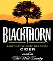 Blackthorn Cider 2010.JPG
