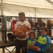 Champion Bird of Show Confined to Erris