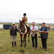 Champion Horse of Show
