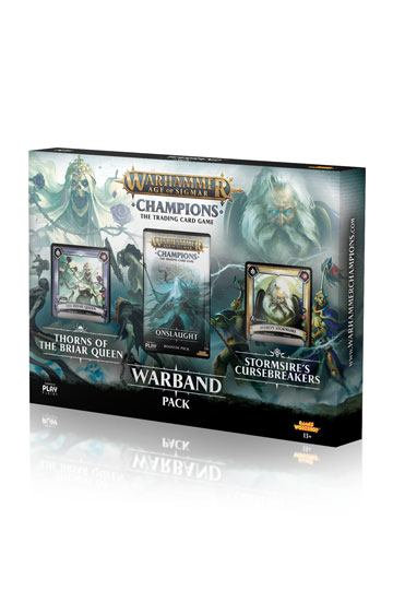 Warhammer Age of Sigmar Champions Warband
