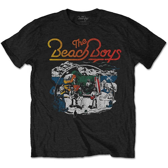 Beach Boys (The), Live Drawing